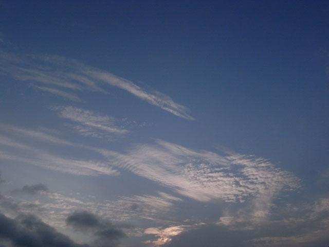 2008-09-06-024.jpg
